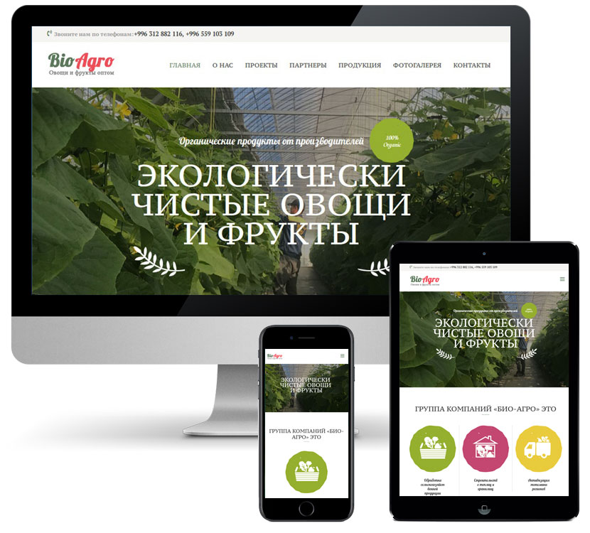 Сreate website for BioAgro.kg